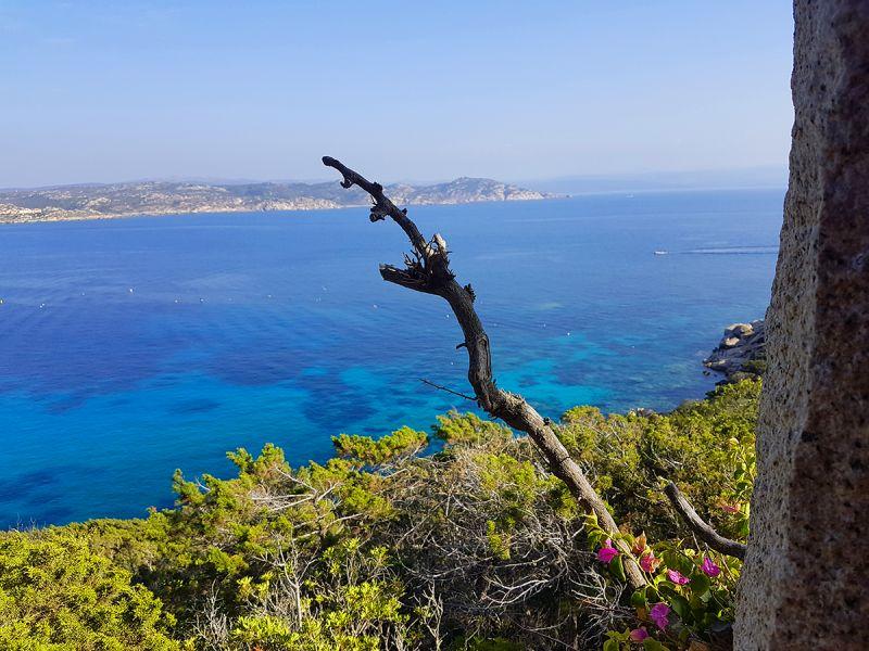 Vue de la terrasse Location Villa 90063 Santa Teresa di Gallura