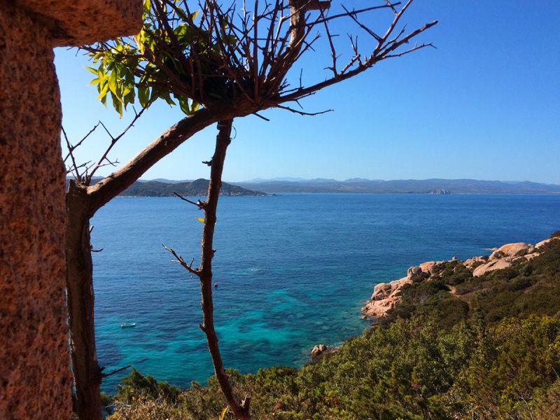 Terrasse 2 Location Villa 90063 Santa Teresa di Gallura