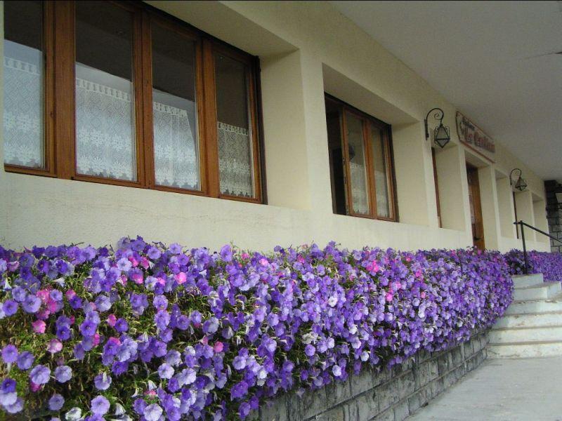 Vue extérieure de la location Location Appartement 95442 Le Grand Bornand