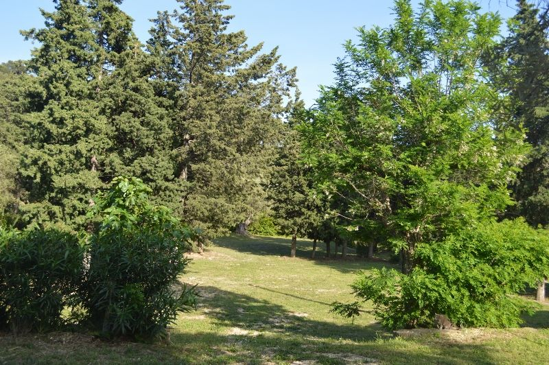 Jardin Location Gite 99880 La Ciotat