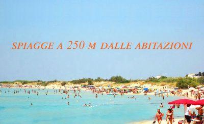 Vue à proximité Location Villa 114625 Pescoluse