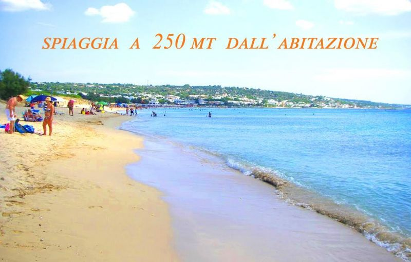 Plage Location Villa 114625 Pescoluse
