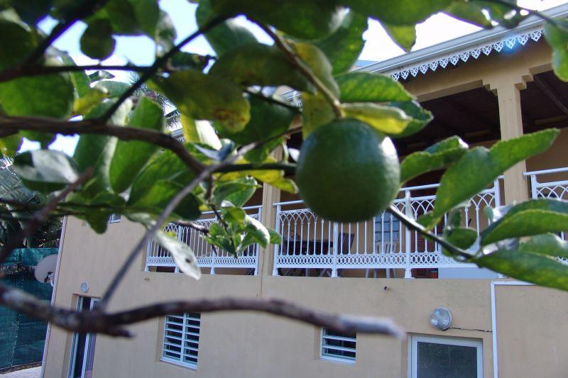 Vue extérieure de la location Location Appartement 117365 Goyave