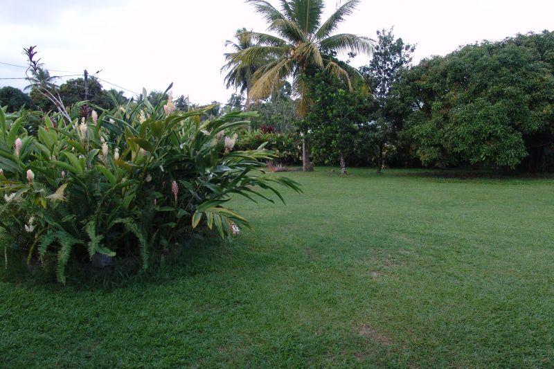 Jardin Location Appartement 117365 Goyave