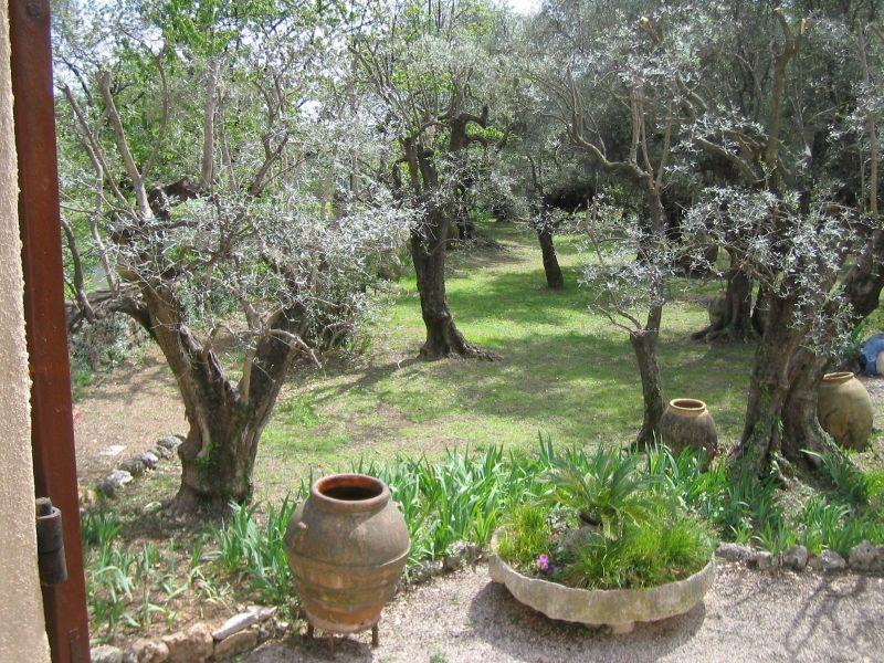 Vue depuis la location Location Villa 118551 Grasse