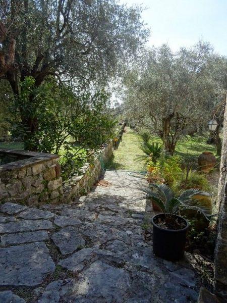 Vue autre Location Villa 118551 Grasse