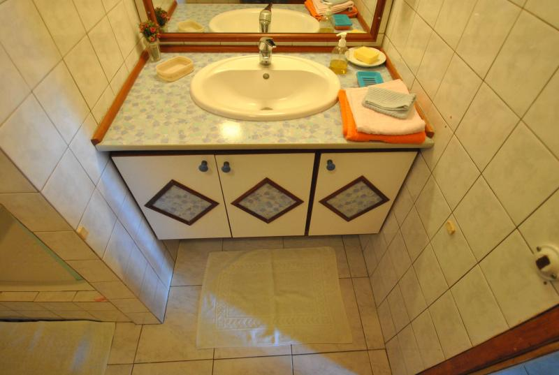 Salle d'eau Location Appartement 67787 Sainte Anne (Martinique)