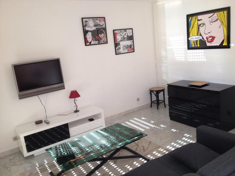 Séjour Location Appartement 68767 Juan les Pins