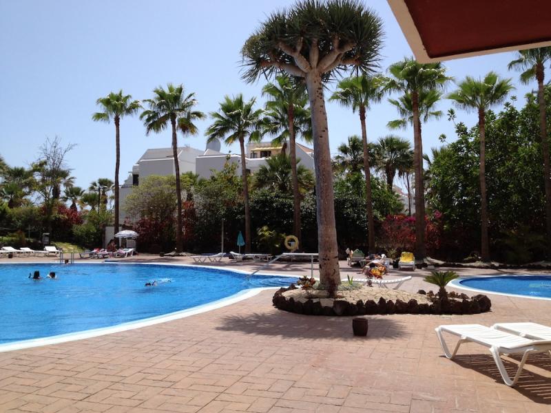 Piscine Location Studio 70234 Playa de las Américas