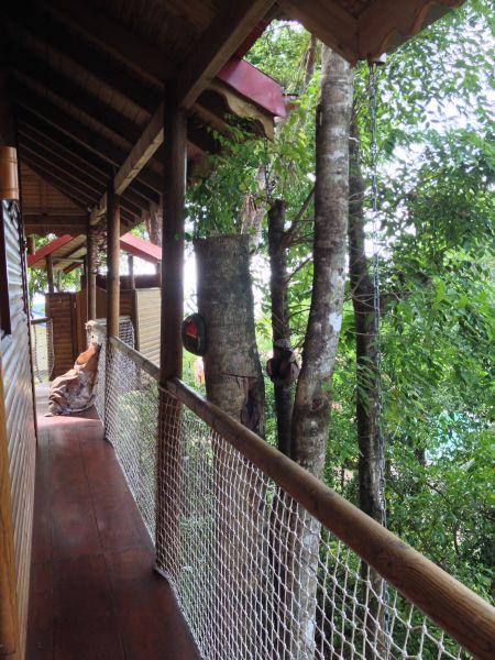 Couloir Location Cabane dans les arbres 83872 Bouillante