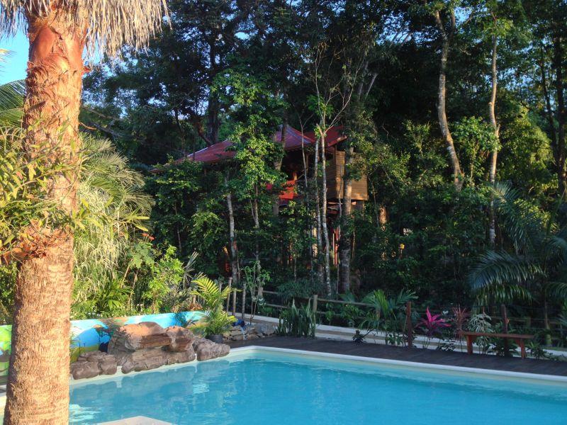 Vue extérieure de la location Location Cabane dans les arbres 83872 Bouillante