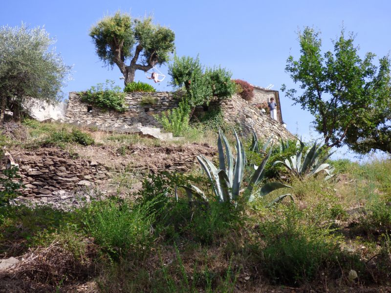Jardin Location Maison 90781 Santa-Lucia-di-Moriani