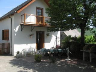 Vue extérieure de la location Location Maison 12068 Lourdes