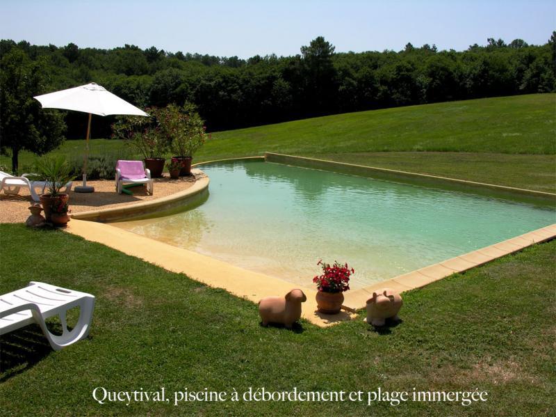 Piscine Location Maison 12405 Sarlat