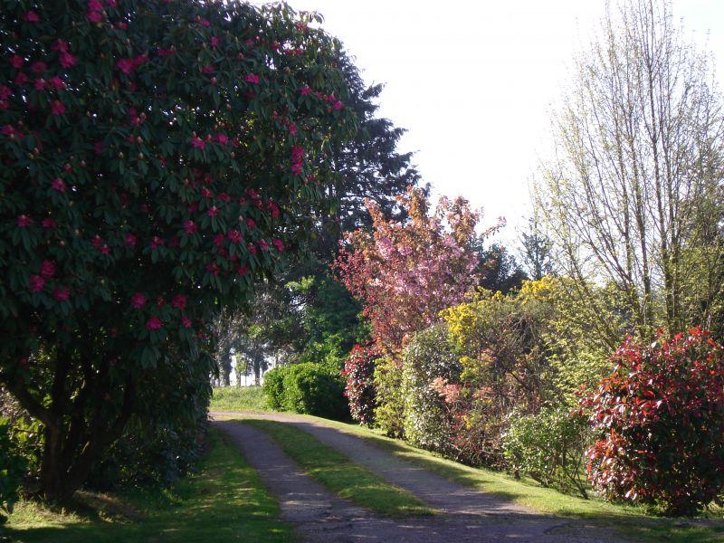 Jardin Location Maison 13138 Douarnenez