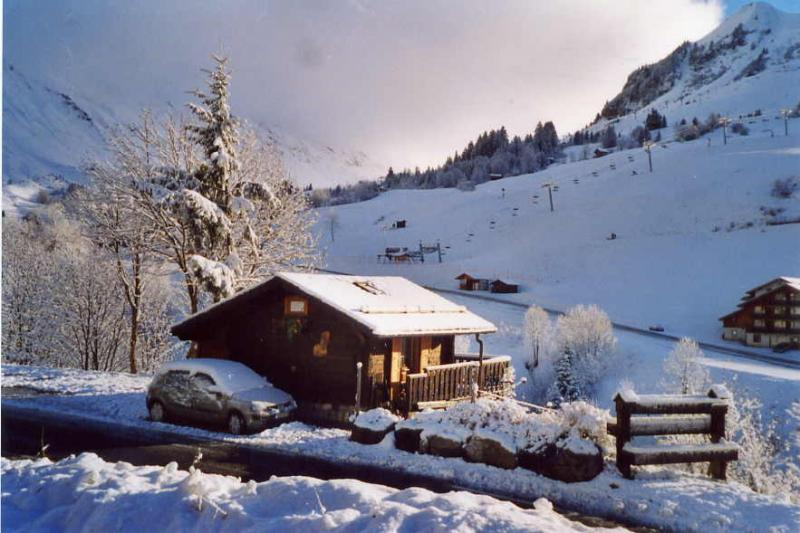 Location Chalet 1363 Le Grand Bornand