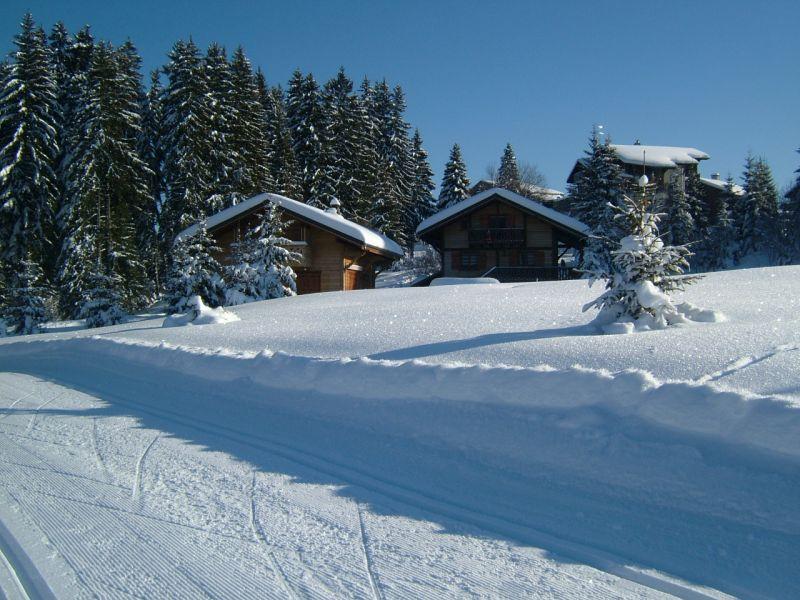 Vue extérieure de la location Location Chalet 14859 Praz de Lys Sommand