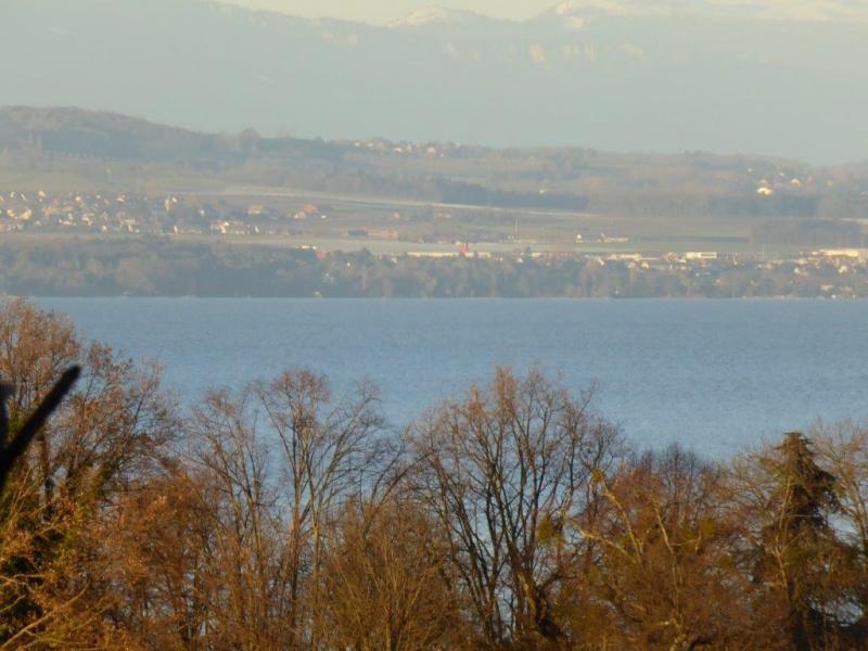 Vue depuis la location Location Chalet 14972 Thonon Les Bains