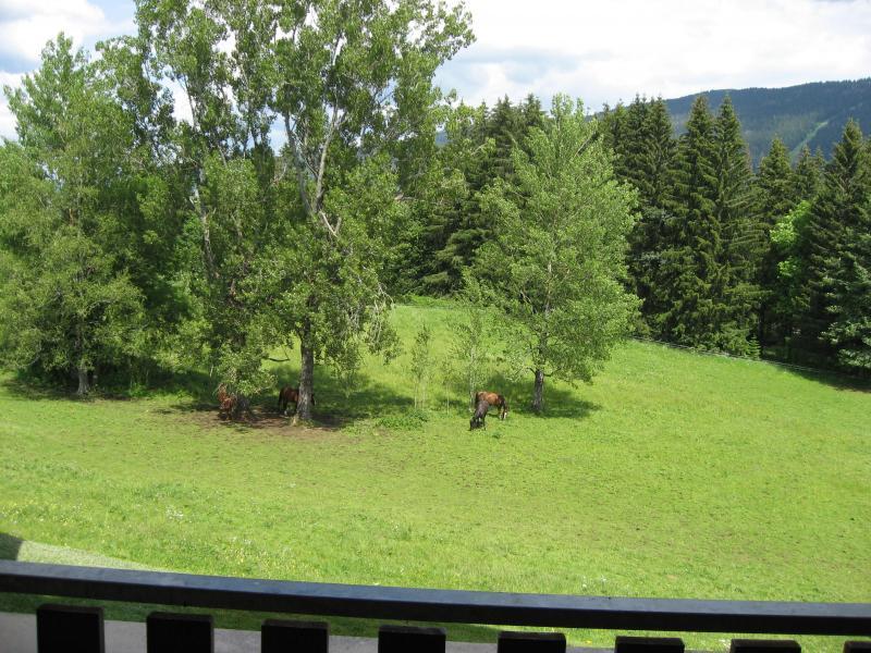 Vue du balcon Location Appartement 15199 Les Rousses