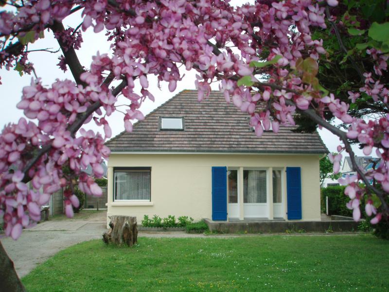 Jardin Location Villa 15234 Agon-Coutainville