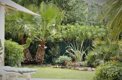Jardin Location Appartement 15846 Juan les Pins