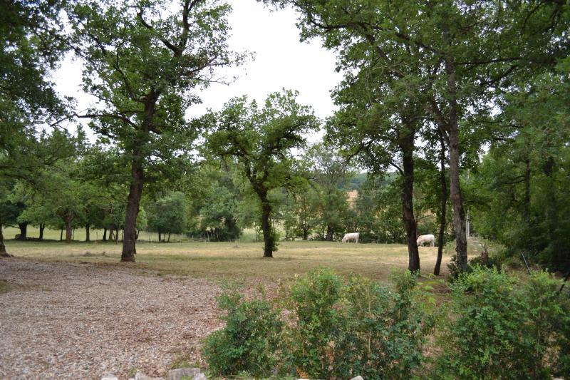 Vue extérieure de la location Location Gite 19555 Cahors
