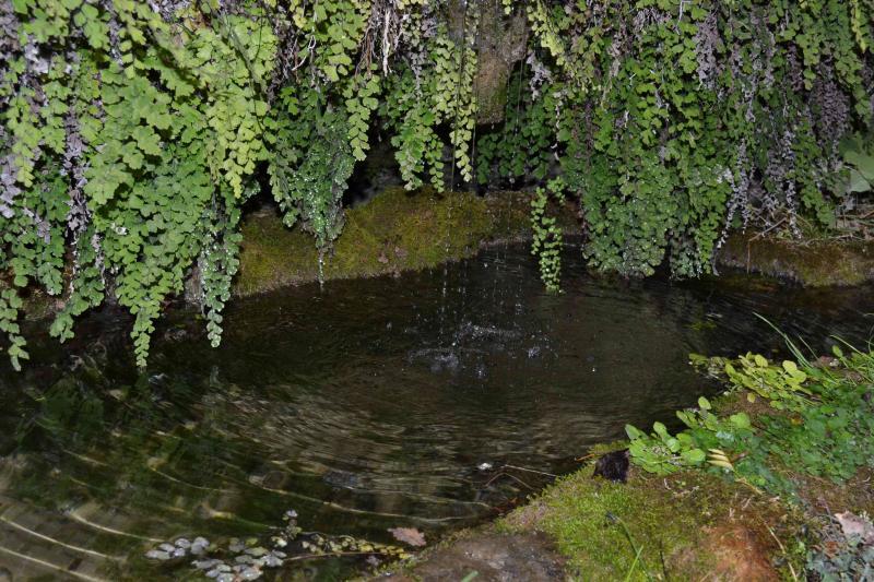 Vue à proximité Location Gite 19555 Cahors