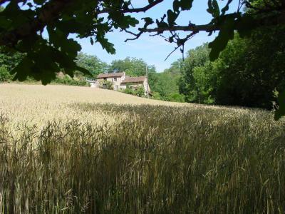 Vue ext�rieure de la location Location Gite 21229 Villefranche de Rouergue