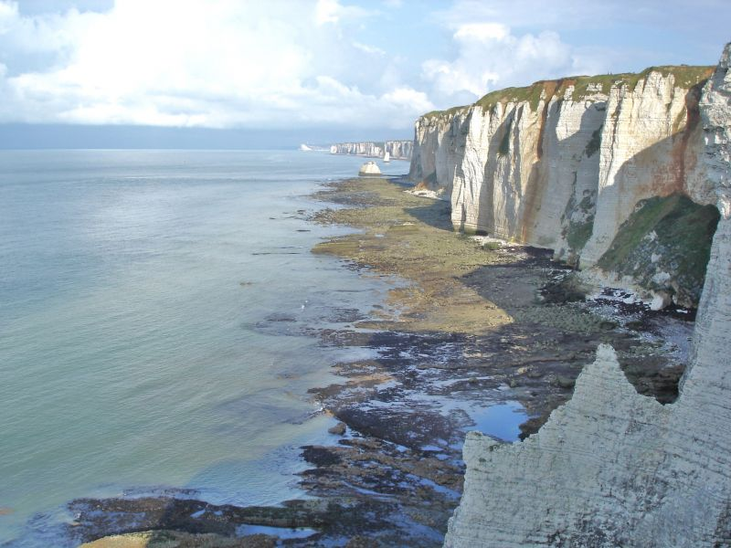 Location Villa 21419 Etretat
