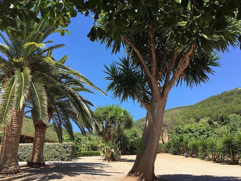 Vue extérieure de la location Location Studio 22514 Alghero