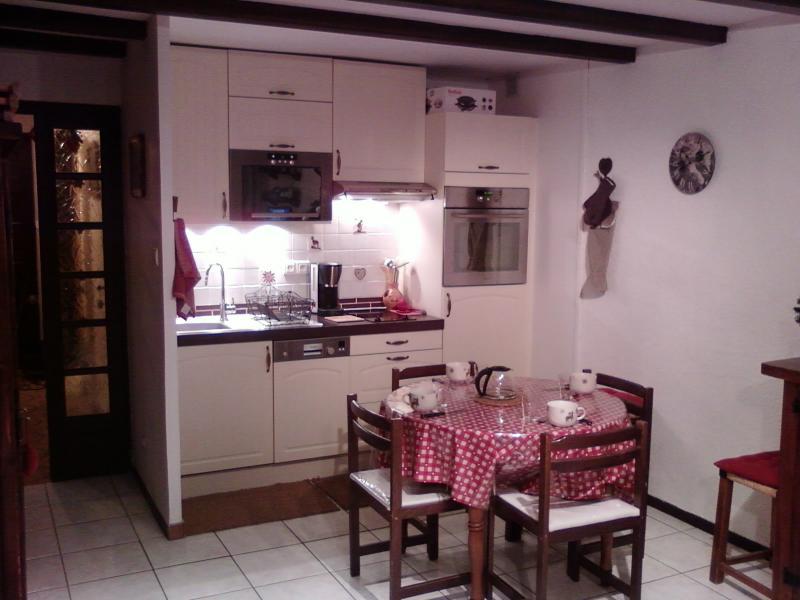 Coin cuisine Location Appartement 28097 Alpe d'Huez