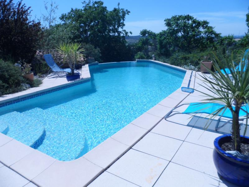 Piscine Location Villa 28268 Ruoms