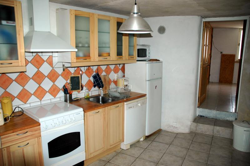 Cuisine américaine Location Appartement 2888 Serre Chevalier