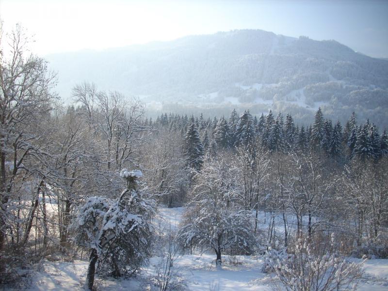 Vue depuis la location Location Appartement 28936 Samoëns