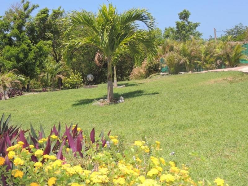 Jardin Location Gite 29739 Bouillante