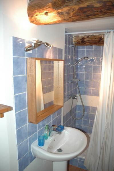 salle de bain Location Appartement 3003 Serre Chevalier