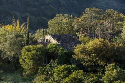 Vue ext�rieure de la location Location Gite 31664 Tavira