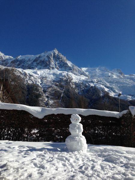 Jardin Location Appartement 32184 Chamonix Mont-Blanc