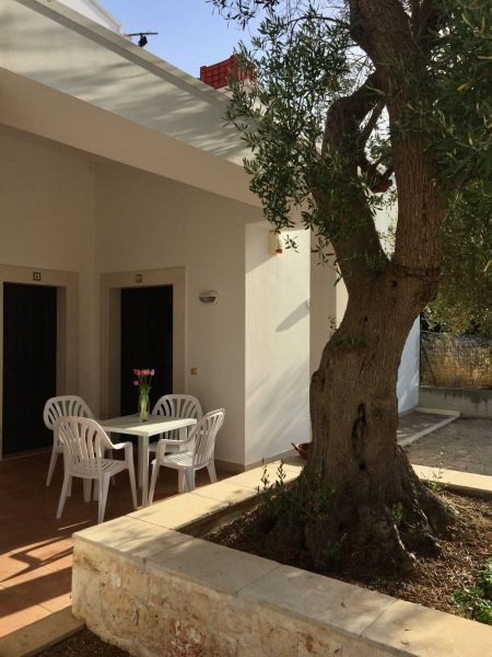 Location Appartement 32519 Polignano a Mare