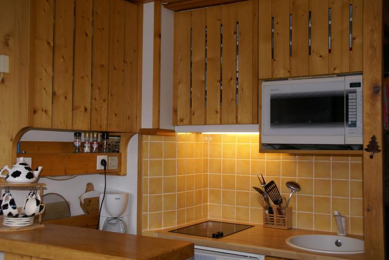 Cuisine américaine Location Appartement 330 Les Arcs