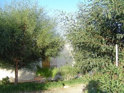Vue ext�rieure de la location Location Maison 39104 Essaouira