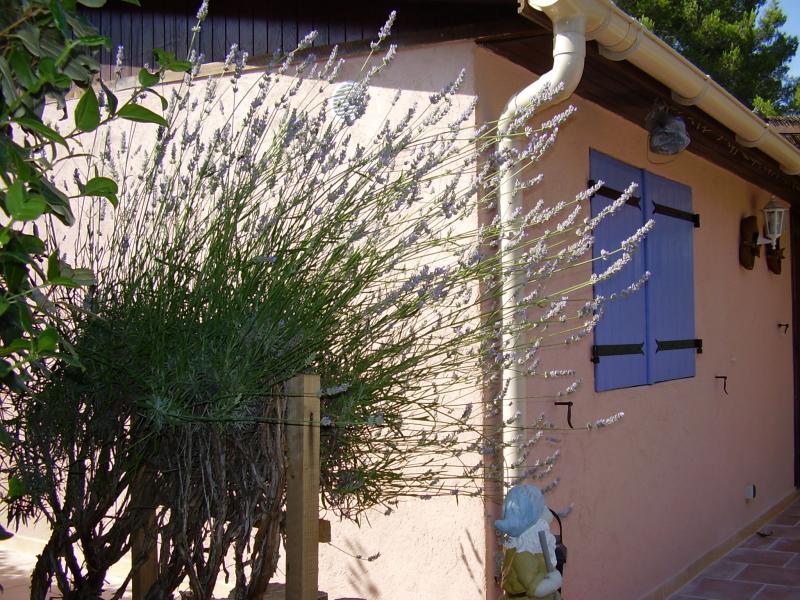 Vue extérieure de la location Location Bungalow 39155 Le Castellet