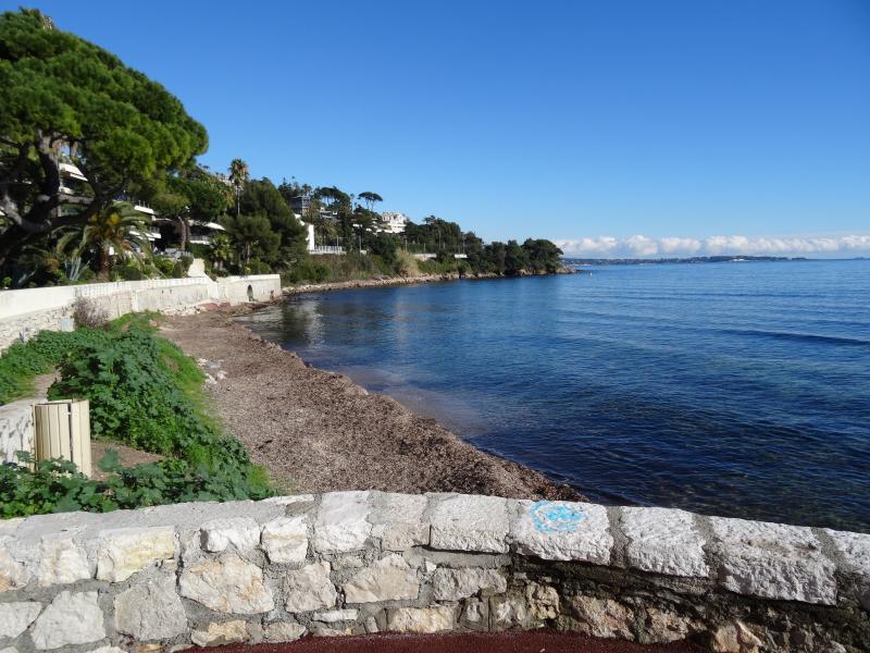 Vue à proximité Location Appartement 39310 Cannes