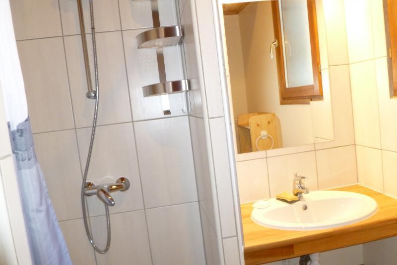 salle de bain Location Appartement 39406 La Grave - La Meije