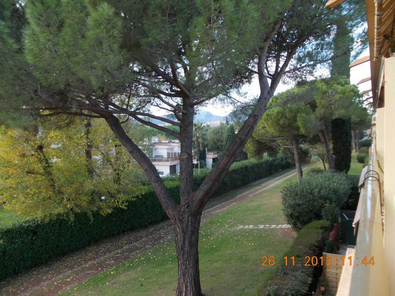 Vue de la terrasse Location Studio 40533 Mandelieu la Napoule