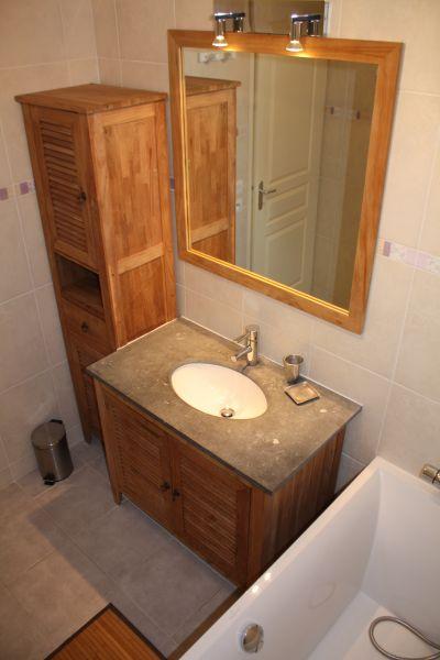 salle de bain 1 Location Chalet 40769 La Norma