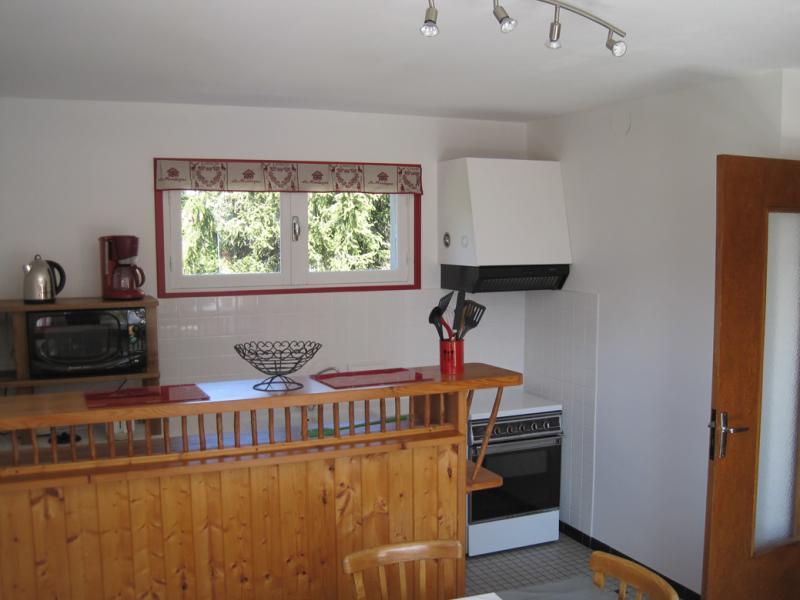 Cuisine indépendante Location Appartement 41177 Saint Lary Soulan