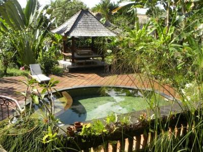 Vue de la terrasse Location Maison 41763 Ubud