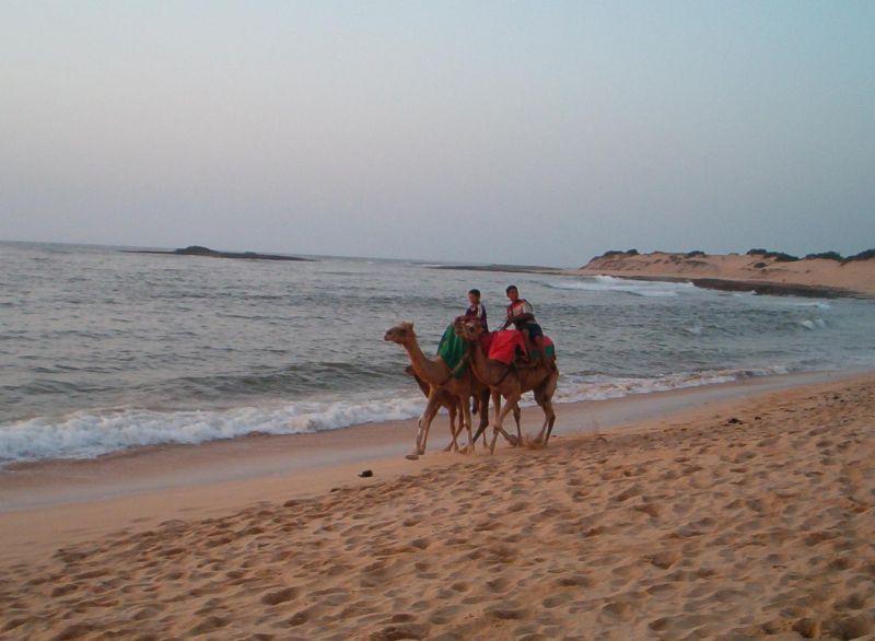 Plage Location Villa 42548 Mohammedia