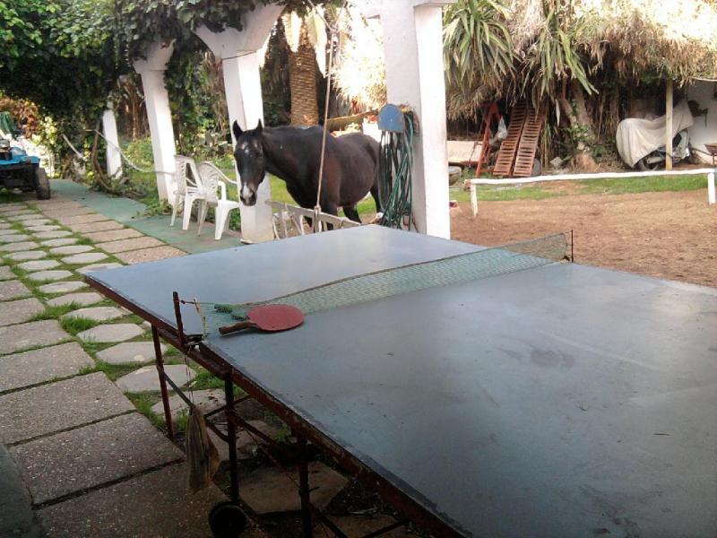 Jardin Location Villa 42548 Mohammedia